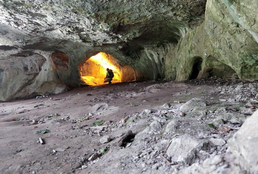 Die Höhle der Hexen